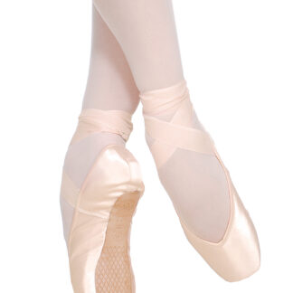 grishko fouette proflex pointe shoes buy online
